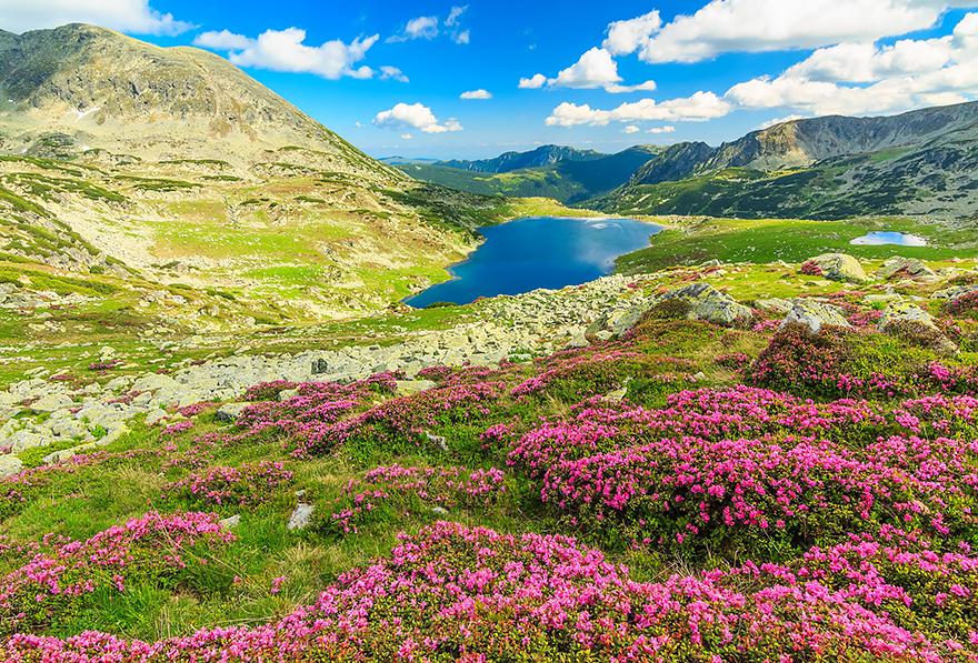 16. The magical Retezat National Park