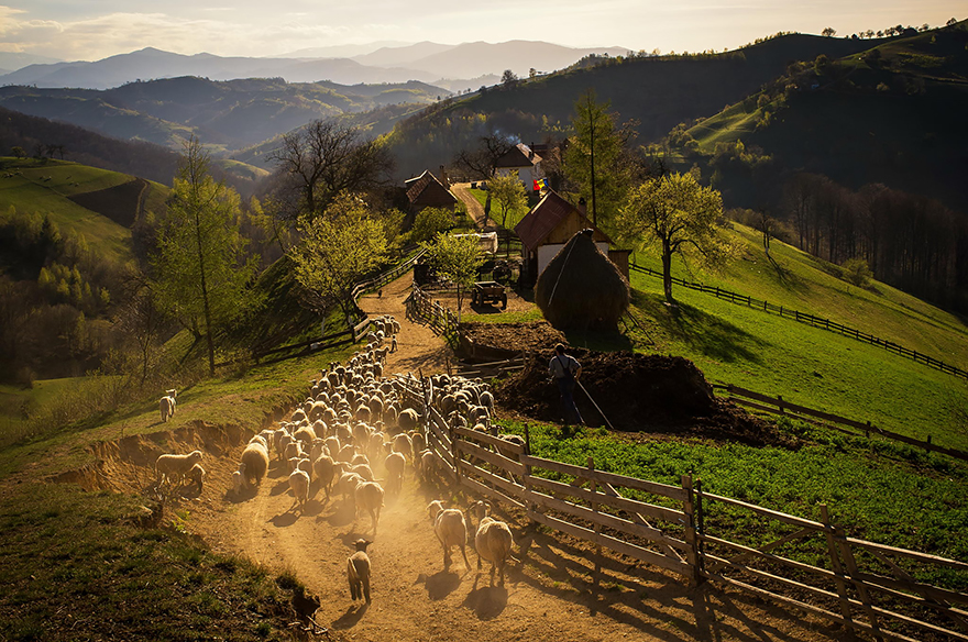 17. The Spring afternoon in Holbav Village
