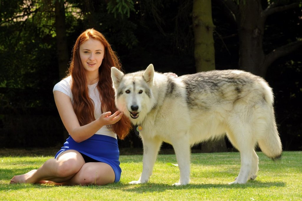 1. Sophie Turner adopted the dog that played her dire wolf