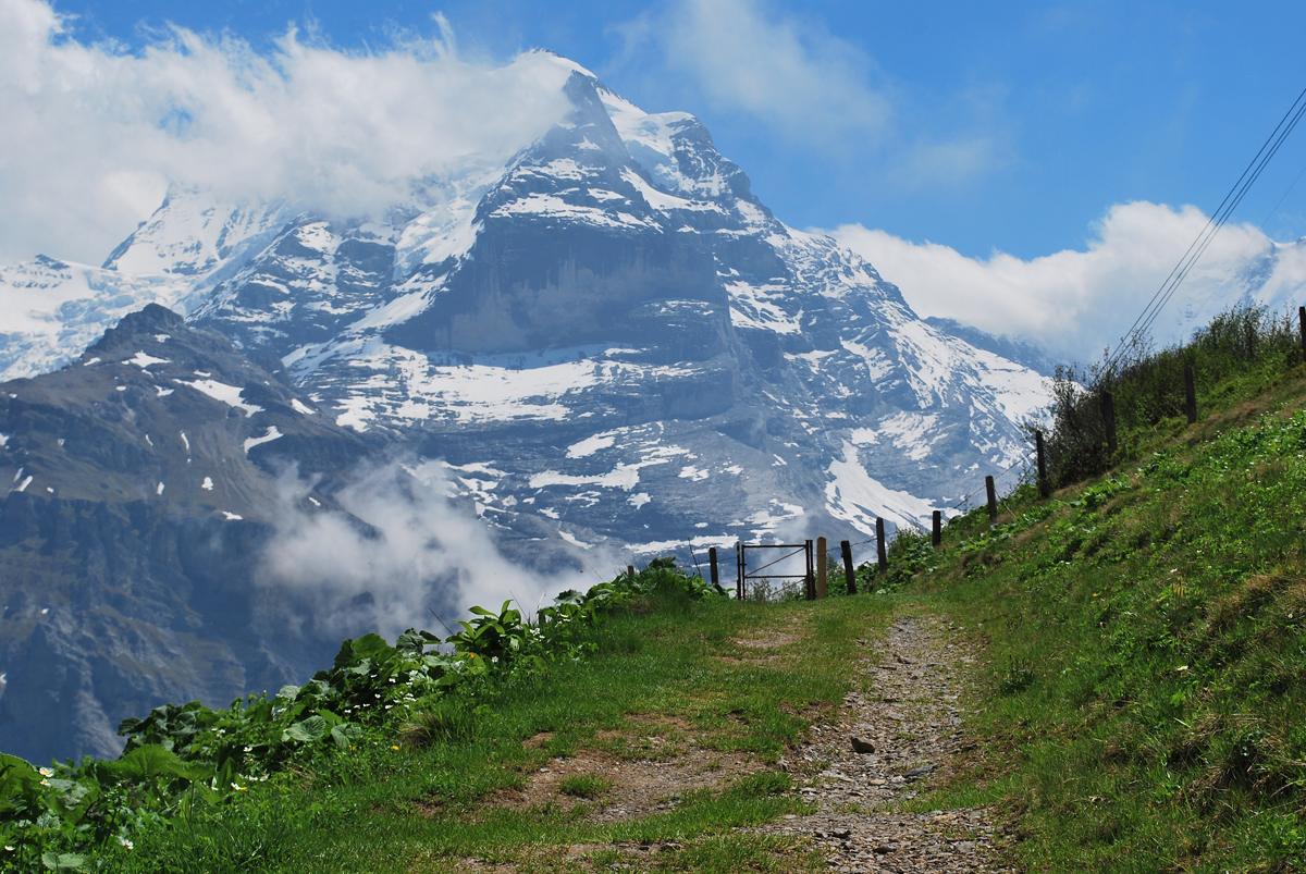 12. Alps