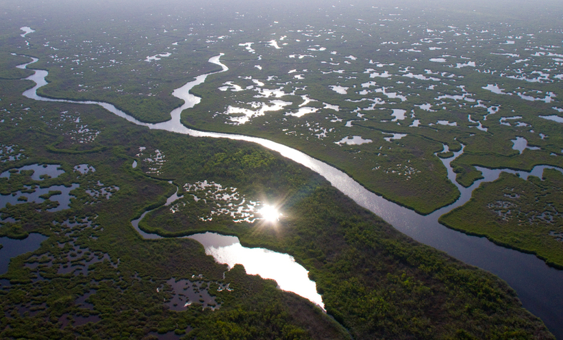 8. The Everglades - 40 Years