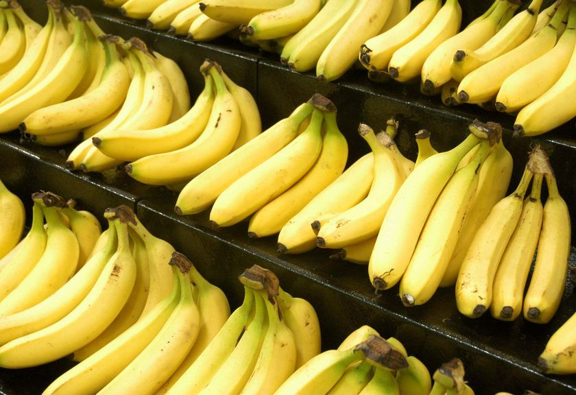14. Bananas share 50 of our DNA