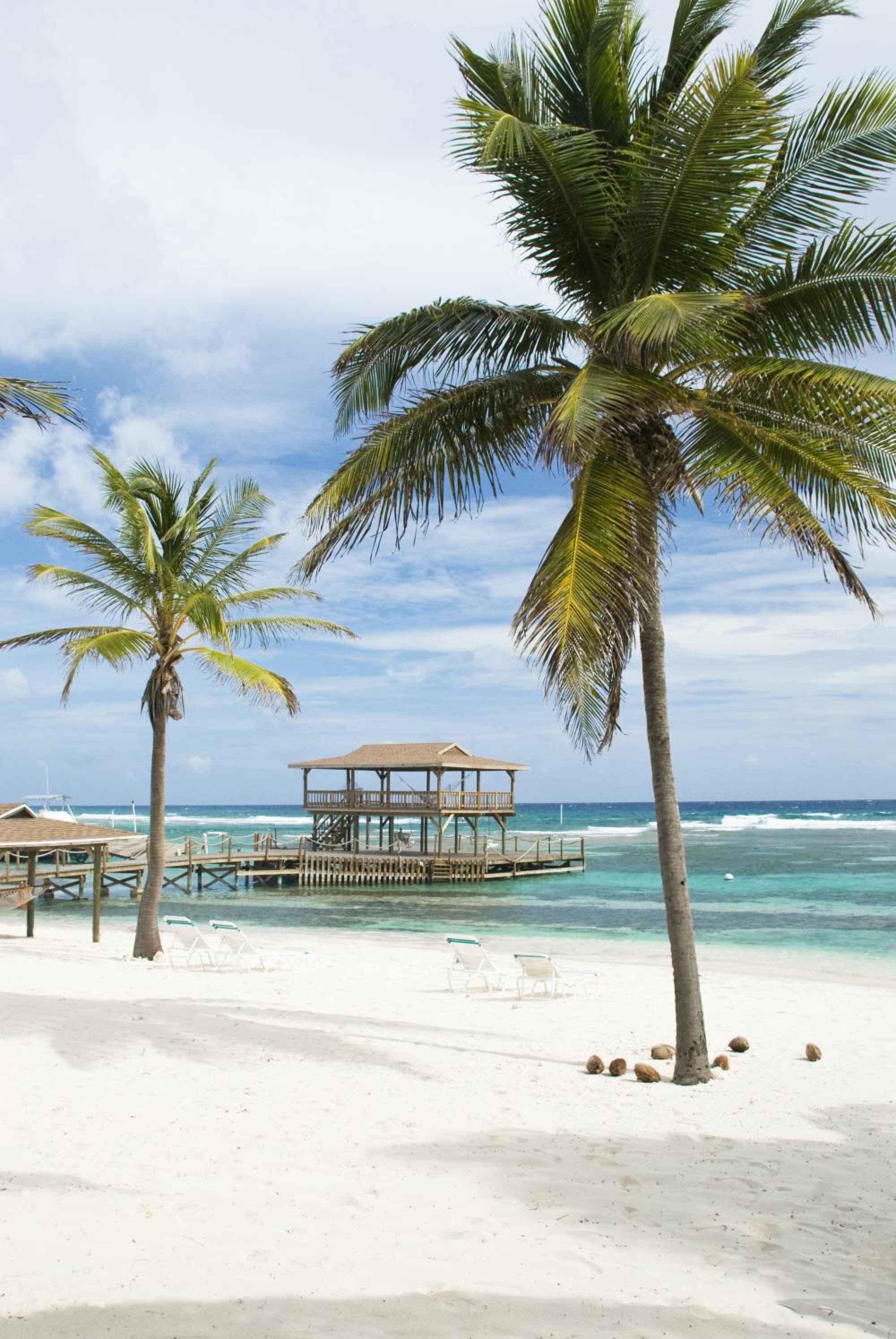 2. Caribbean