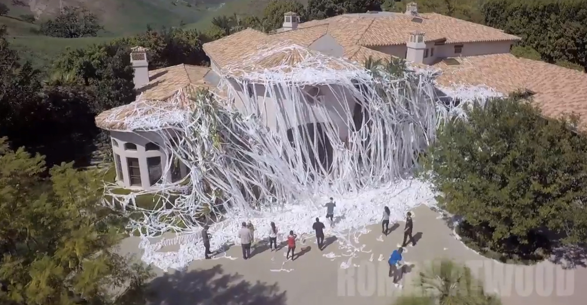 Image result for toilet paper attack