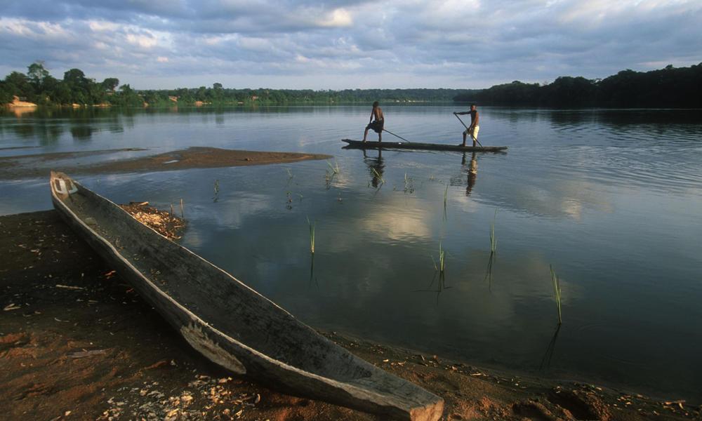 14. Congo Basin - 25 Years