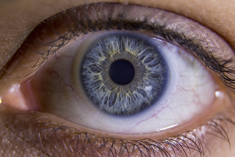 6. Your eye could see a candle from roughly 30 miles away